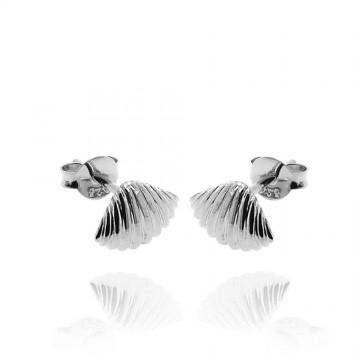 Brincos de conchas em prata...
